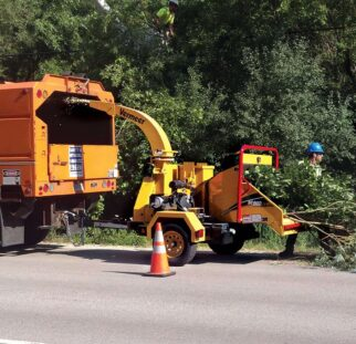 Commercial Tree Services-El Cajon CA Tree Trimming and Stump Grinding Services-We Offer Tree Trimming Services, Tree Removal, Tree Pruning, Tree Cutting, Residential and Commercial Tree Trimming Services, Storm Damage, Emergency Tree Removal, Land Clearing, Tree Companies, Tree Care Service, Stump Grinding, and we're the Best Tree Trimming Company Near You Guaranteed!