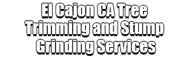 El Cajon CA Tree Trimming and Stump Grinding Services Logo-We Offer Tree Trimming Services, Tree Removal, Tree Pruning, Tree Cutting, Residential and Commercial Tree Trimming Services, Storm Damage, Emergency Tree Removal, Land Clearing, Tree Companies, Tree Care Service, Stump Grinding, and we're the Best Tree Trimming Company Near You Guaranteed!