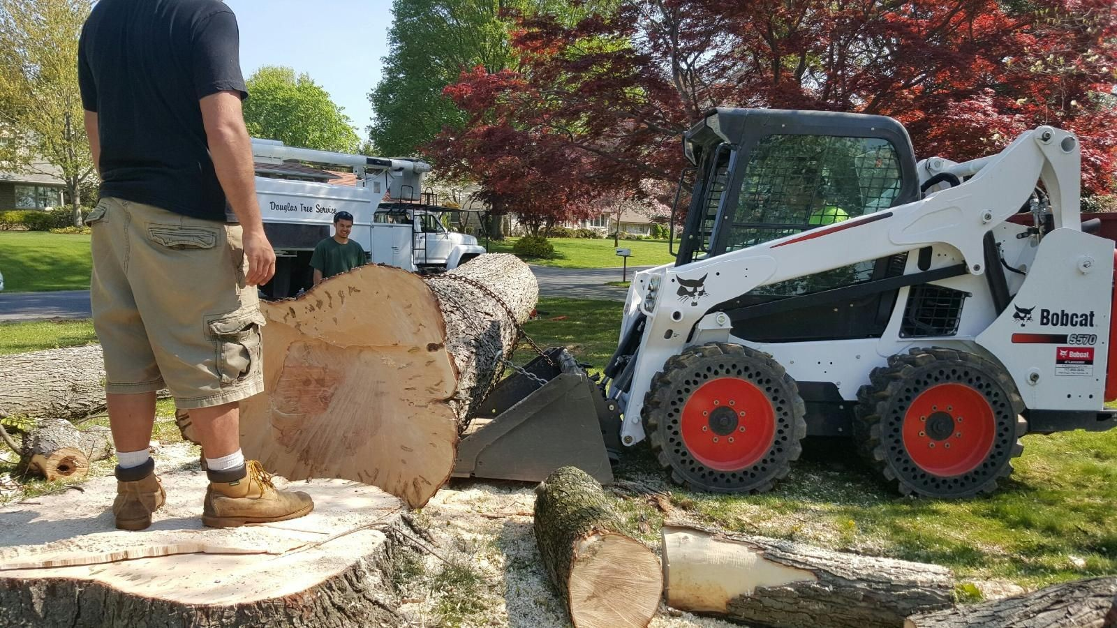Grossmont-El Cajon CA Tree Trimming and Stump Grinding Services-We Offer Tree Trimming Services, Tree Removal, Tree Pruning, Tree Cutting, Residential and Commercial Tree Trimming Services, Storm Damage, Emergency Tree Removal, Land Clearing, Tree Companies, Tree Care Service, Stump Grinding, and we're the Best Tree Trimming Company Near You Guaranteed!